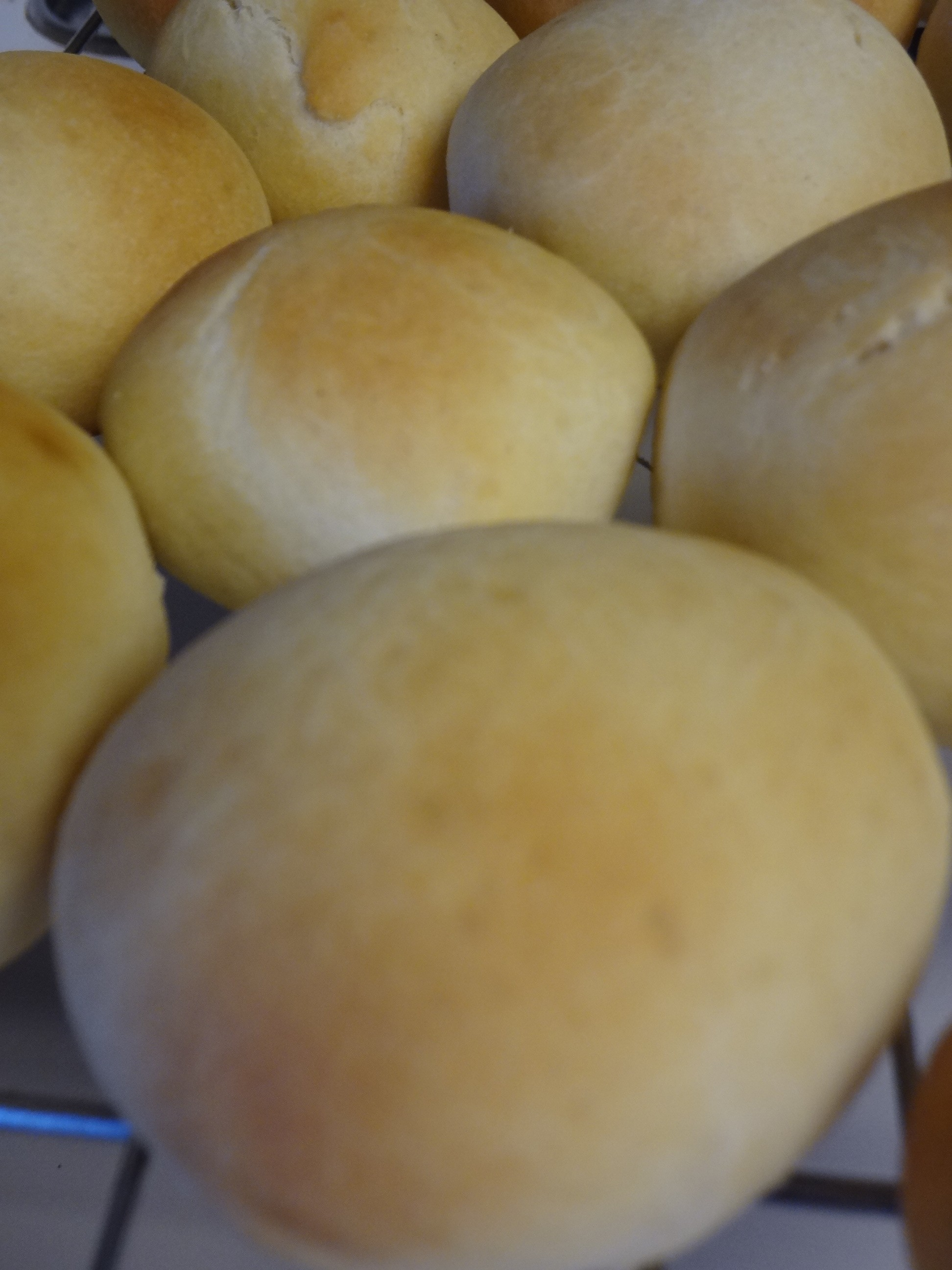bread machine rolls