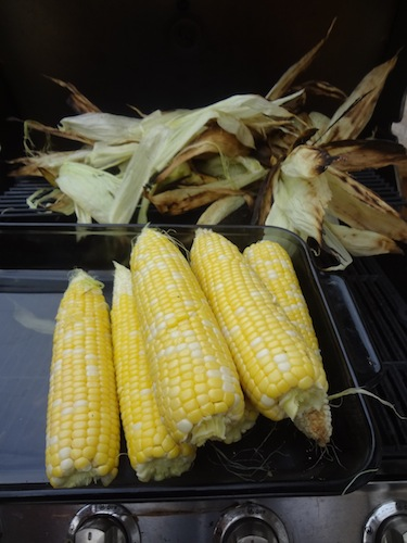 corn on the cob fresh off of the grill