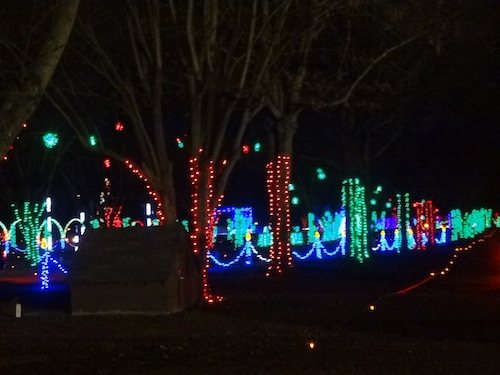 Shadracks Christmas Wonderland.Checking Out The Christmas Lights Tshanina Peterson