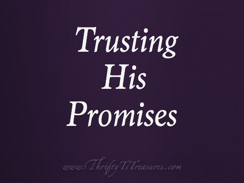 As I face difficult situations I'm learning that trusting His promises is the best way to make it through!
