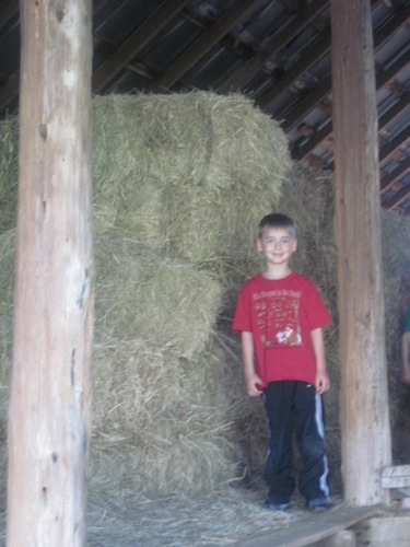 lincoln in barn