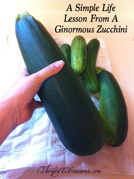 There are lessons all around us, and today I'm sharing a simple life lesson I learned from a ginormous zucchini!