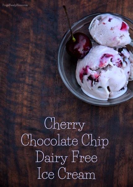 Dairy Free Cherry Chocolate Chip Ice Cream