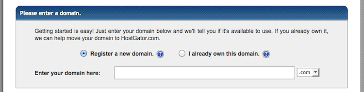hostgator choosing a domain