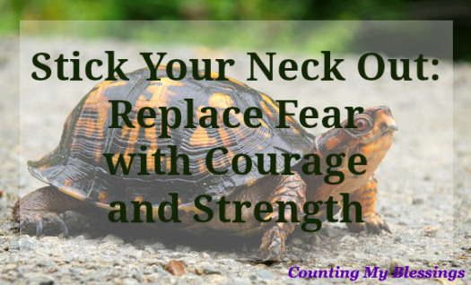 14 Ways To Replace Fear With Courage and Strength