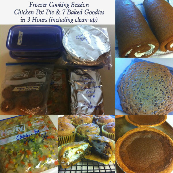 Stop by for my latest freezer cooking session! I made 7 Baked Goodies in 3 Hours (and that includes clean-up)! If I can do this, you can too!