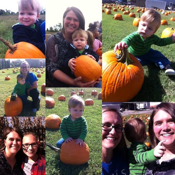 Daltons first pumpkin patch