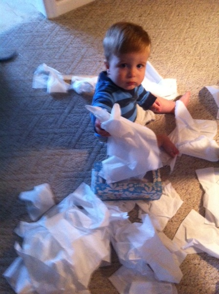 dalton with tissues
