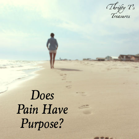 Why is life painful? Does pain have purpose? I believe so or the Lord wouldn't allow us to go through it. Come see exactly what I mean.