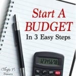 How To Start A Budget in 3 Easy Steps