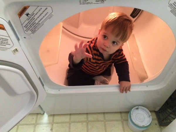 dalton in dryer