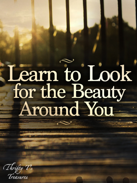 As I look around at this world we live in it's very easy to see all of the brokenness and heartache. But if you look closely you'll see the beauty around you...it's not always easy to find but it is out there, my friend!
