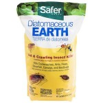 Diatomaceous Earth Ant Killer
