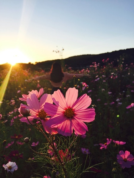 a girl dancing in the meadow at dusk