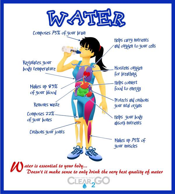 chart with benefits of drinking water
