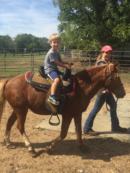 Dalton riding pony