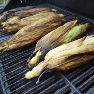 husked corn on the cob cooking on the grill