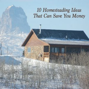 Whether you're looking for tips on frugal living, skills to be more self sufficient, or just want to learn more about simple living, you're going to love these homesteading ideas. These 10 hacks will teach you how homesteaders save money in practical ways. Stop by for all the details.