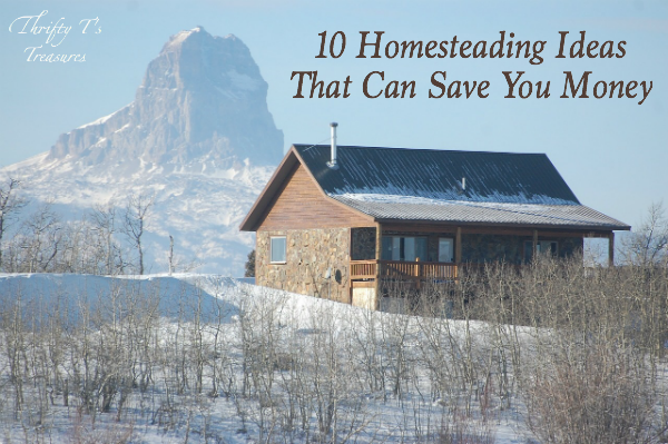 10 Homesteading Ideas That Can Save You Money