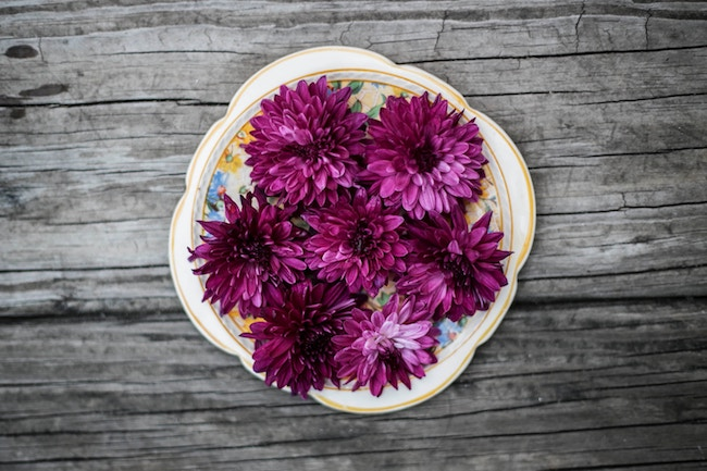 pink petaled flowers on white ceramic plate