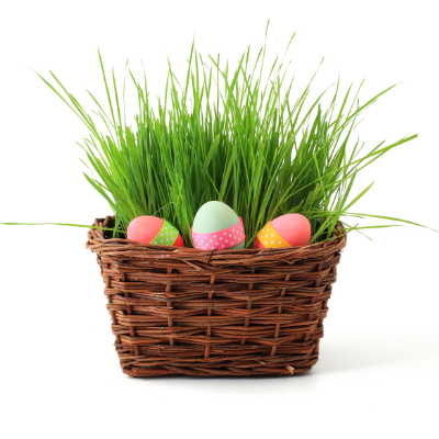 Tired of Easter baskets that are full of junk? You'll love this list of creative and unique Easter Basket ideas for kids that focus on Jesus and his resurrection. It will be easy to put a smile on the faces of both your boys and girls when they see their basket filled with fun and cute items that are also practical and useful. (Don't worry, there's no candy on my list.) If you're not sure what to put in your baskets and you're looking for Christian themed ideas you've come to the right place!